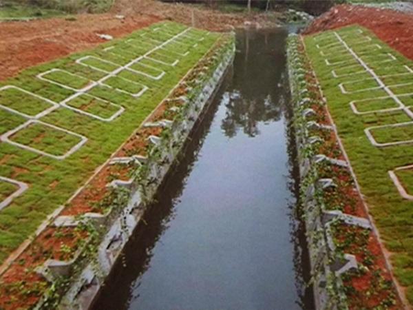 植草式挡土墙
